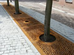 Continuous steel tree grate. Visit the slowottawa.ca boards:  http://www.pinterest.com/slowottawa/