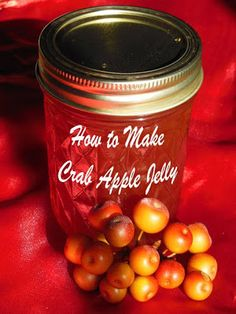 How to Make Crab Apple Jelly from Summers Acres Crab Apple Recipes, Green Apple Recipes, Jelly Recipes, Jam Recipes, Canning Recipes, Other Recipes, Snack Recipes, Crabapple Jelly Recipe, Crab Apple Jelly
