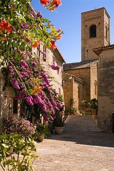 Torre di Palme, , province of Pesaro and Urbino Marche region  Italy
