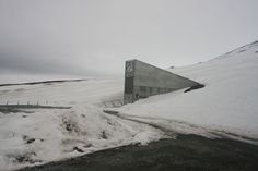 Doomsday Seed Vault Makes First Ever Withdrawal for Syria