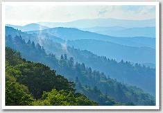 Great pic of the Blue Ridge Mountains of the Appalachian range. All sights are breath taking here! Blue Ridge Mountains, Blue Ridge Parkway, Beautiful World, Beautiful Places, Appalachian Mountains, Great Pic, Places To See, Cool Pictures, National Parks