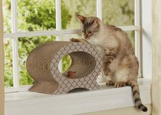 Here's a new line of decorative and functional cat scratchers with a wide variety of styles to choose from. Introducing Enchanted Home Pet corrugated cardboard cat scratchers and lounges. There are so many shapes and sizes, there's sure to be one to please every cat! Designed with comfort and function in mind, these scratchers serve...Read More