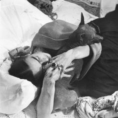Frida Kahlo hugging one of her xoloitzcuintles, Coyoacan, Ciudad de Mexico, 1952 by Héctor García