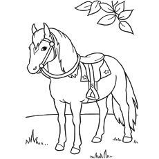 Are you searching horse coloring pages for your kids? Teach your kid about this grand animal using these 48 free printable coloring pages. Color & enjoy now Horse Coloring Pages, Coloring Pages For Kids, Coloring Books, Free Horses, Horse Birthday, Free Printable Coloring Pages, Free Printables, Kids Story Books, Book Illustration