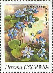 Znaczek: Anemone hepatica (ZSRR) (Spring Flowers.) Mi:SU 5280,Yt:SU 5003