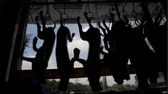 Cazuza: Festival chinês mata 10 mil cachorros para transfo...