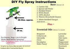 DIY Fly Spray Instructions for Horse, Dogs, Cats. Pay attention to the RED print, for special instructions for cats.   For smaller animals use a smaller spray bottle and use less essential oils.   -Diana Wanamaker Essential Oils for Pets  Their People