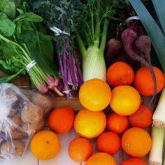 My CSA box this week:) Terra Farms