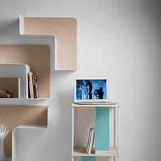Fishbone Modular Shelf