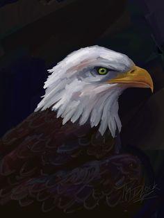 Bald Eagle painting.   More artwork at http://www.zazzle.com/tadlockart?rf=238118821803925076