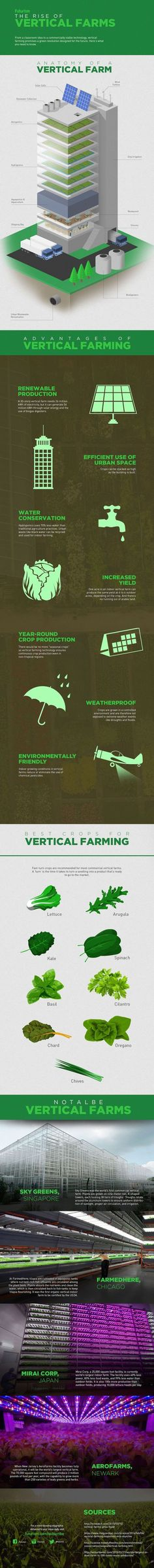 By 2050, nearly 2/3 of the world's population will be living in cities. Here's how we'll feed them. http://futurism.com/images/the-rise-of-vertical-farms-infographic/?utm_campaign=coschedule&utm_source=pinterest&utm_medium=Futurism&utm_content=The%20Rise%20Of%20Vertical%20Farms%20%5BInfographic%5D #hydroponicsinfographic