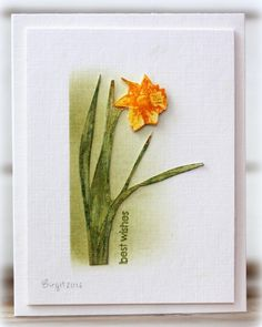 CAS365 Daffodil by Biggan - Cards and Paper Crafts at Splitcoaststampers