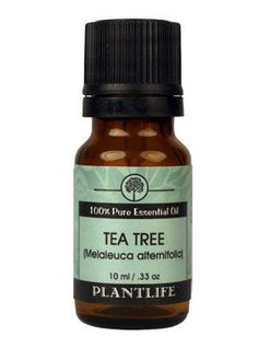 Tea Tree 100% Pure Essential Oil - 10mlTea Tree Essential Oil has a herbal, medicinal & pungent aroma with an underlying warm, nutmeg-like scent. It's a natural antiseptic, bactericide, fungicide and anti-viral.