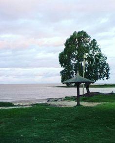 #BuenosAires #Argentina #PuntaIndio #PuntaDelIndio