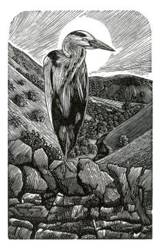 "New Wood Engraving: ""Dovedale Heron"" Andy English, UK"