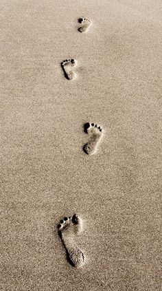Zen - our mark in this world - just footprints in the sand .