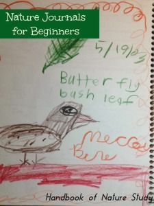 Nature Journals for Beginners- Handbook of Nature Study is guest posting over at Gardner-Faver Gardner-Faver Huang, sharing some beginner's tips for creating an easy nature journal entry. Nature Activities, Science Nature, Outdoor Activities, Bird Book, Image Fun, Science For Kids, Teaching Science, Nature Center, Nature Journal