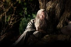 Ian McKellen as Gandalf in The Lord of the Rings Trilogy and The Hobbit Gandalf, Legolas, Trailer Song, O Hobbit, The Hobbit Movies, Lotr Movies, Hobbit Hole, Jackson, Film