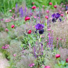 Stepping back to Chelsea 2009 and this beautiful late spring border