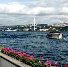 Istanbul Turkey, Cities, Island, House, Tourism, Home, Islands, Homes, City