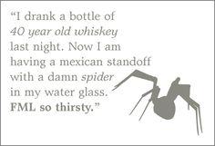 Hangover vs Spider