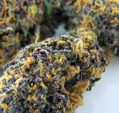We surveyed our staff and came up six strains of purple cannabis that not only taste amazing but will also get you stoned to the bone.
