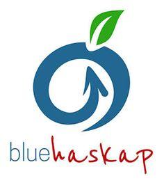 Dystrybutorzy Logos, Logo