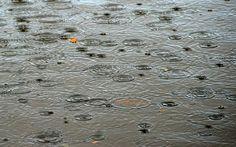 Autumn+Rain+Ripples.jpg (1600×999)