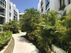 Informatie over accommodaties in Playa del Carmen Riviera Maya, Hostel, Hotels And Resorts, Sidewalk, Plants, Playa Del Carmen, Side Walkway, Walkway, Plant