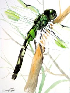 Dragonfly+original+watercolor+painting+12+X+9+in+by+ORIGINALONLY,+$25.00