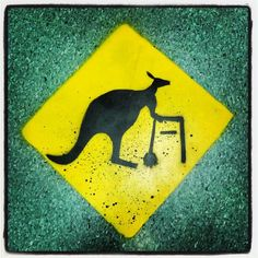 Beware of elderly roo Meanwhile In Australia, As Time Goes By, Australia Living, South Pacific, Commonwealth, Getting Old, Superhero Logos, Compassion, Kangaroo