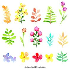 Free vector Watercolor flowers and leaves #12369