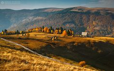 Autumn light - Apuseni Mountains - Romania For all my work, please check my website or FB page. Thank you so much !!!
