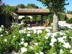 use of white roses en masse-evening fragrance too