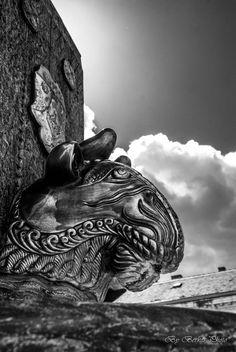 Pécs Zsolnay kút Hungary, Lion Sculpture, Culture, Statue, Black And White, Pictures, Black White, Black N White, Sculpture