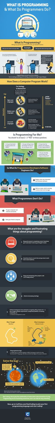 What Is Programming And What Do Programmers Do? [Infographic]