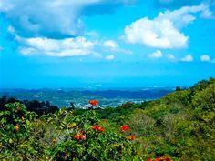 Costa Norte desde Corozal, PR