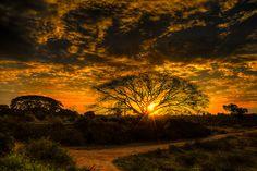 500px / Into the shining sun by Vamsi Krishna Korabathina