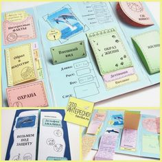 School Hacks, School Projects, Colegio Ideas, Geography For Kids, Diy Notebook, Bracelet Crafts, School Notes, Studyblr, Study Notes