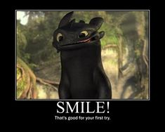 """One of Jen's favorite movie characters: """"Toothless"""" the Night Fury Dragon from the movie How to Train Your Dragon Httyd, Hiccup, How To Train Your, How Train Your Dragon, Train Dragon, Toothless Dragon, Toothless Funny, Pet Dragon, Night Fury"""