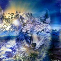 205 Best Wolf Wallpapers 1 Images In 2020 Wolf Wallpaper Wolf