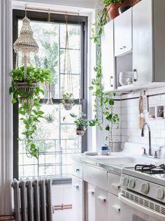 De cerâmica, vidro e macramê, as peças deixam as plantas próximas da luz natural e enfeitam o ambiente de um jeito único