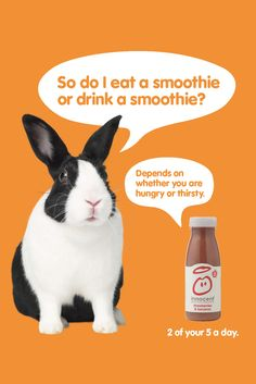 Another 2010 Innocent Smoothies Print ad with Rabbit. Innocent Drinks, Brand Archetypes, Tv Adverts, Visual Literacy, Food Branding, Innocent Girl, Print Ads, Stuff To Do, Advertising