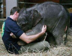 Ejerciendo de ser humano valioso. Afecto, compasión y protección para nuestros compañeros de espacio vital.