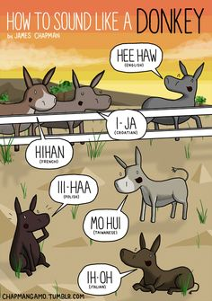 Donkey sounds in different languages by James Chapman European Day Of Languages, World Languages, James Chapman, Different Languages, French Resources, Blooms Taxonomy, Learn A New Language, Teaching Spanish, Sounds Like