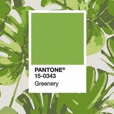 Pantone Greenery – Color of the Year 2017
