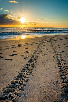 Tracking the Sunrise - Vero Beach, Florida