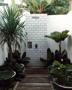 Outdoor showers, the dream.