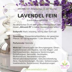 Als Universalheilmittel gehört das ätherische Öl des echten Lavendels in jede HAUSAPOTHEKE – es wirkt beruhigend auf Haut und Psyche, lindert bei Schmerzen und Krämpfen und hilft bei Wunden aller Art.  Tipps und einfache Rezepte gibts bei AROMA1x1.com