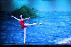 http://baletowo.blog.pl/2015/10/19/7-terminologia-baletowa-zaczynajaca-sie-na-litery-r-i-s/